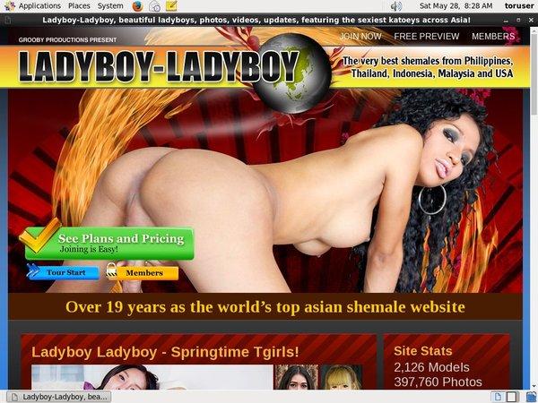 Ladyboy Ladyboy Girl